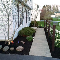 Landscaping Services: Corrective Pruning & Hedge Trimming in Rochester NY Region