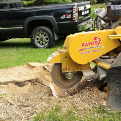 Landscaping & Tree Services including Stump Grinding & Stump Removal in Rochester NY
