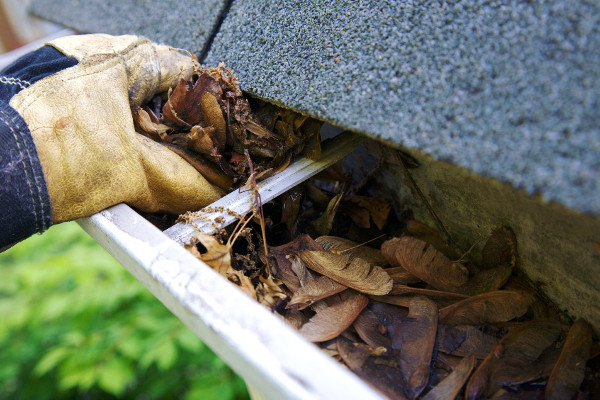 Gutter Cleaning by ArborScaper Tree & Landscape in Rochester and Monroe County NY