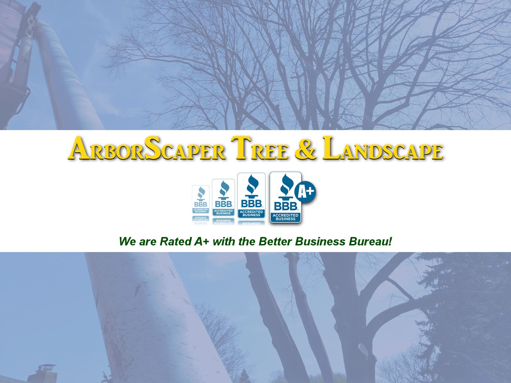 ArborScaper Tree & Landscape is BBB Accredited Member with A+ Certified Rating - Rochester, NY
